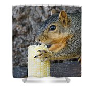 Squirrel Holding Corn Shower Curtain