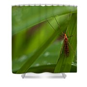 Squito Has Landed Shower Curtain