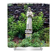 St Francis In The Garden Shower Curtain