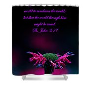 St. John 3  17  And Bee Balm Shower Curtain