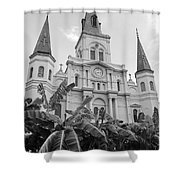 St Louis Cathedral Rising Above Palms Jackson Square French Quarter New Orleans Black And White Shower Curtain