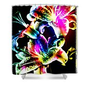 Stack Of Stargazers Dreaming Shower Curtain