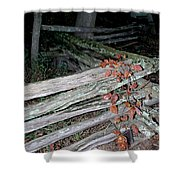 stacked Fence Shower Curtain