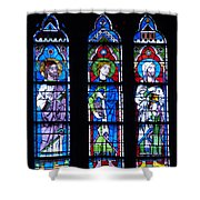 Stain Glass At Notre Dame Cathedral Parus Shower Curtain