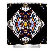 Stained Glass 2 Shower Curtain