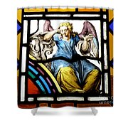 Stained Glass Angel Shower Curtain