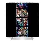 Stained Glass Pc 06 Shower Curtain