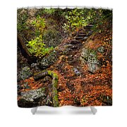 Stairway To The Sky Shower Curtain