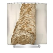 Stalactite Shower Curtain