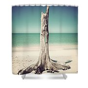 Standing Alone-vintage Shower Curtain
