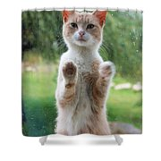 Standing Cat Shower Curtain