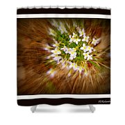 Star Burst Shower Curtain