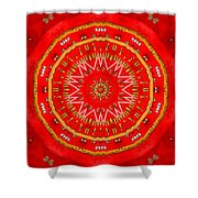 Star Cookie Art Shower Curtain