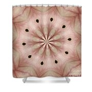 Star Magnolia Medallion 5 Shower Curtain