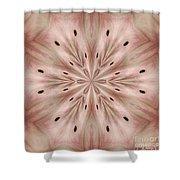 Star Magnolia Medallion 6 Shower Curtain