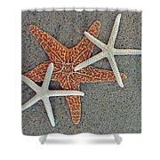 Starfish Three Shower Curtain by Sandi OReilly