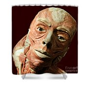 Staring Trance Shower Curtain