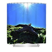 Stars From Below Shower Curtain