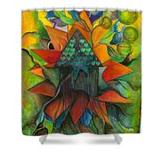 Stars House One Shower Curtain