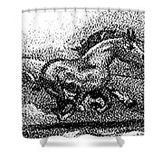 Startled Equus Shower Curtain