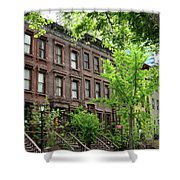 Stately Ny Street Shower Curtain