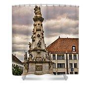 Statue At St Matthias Church Shower Curtain