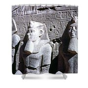 Statues Of Ramses II Shower Curtain by Granger