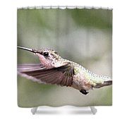 Stay Low Shower Curtain