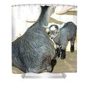 Staying Close Shower Curtain