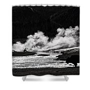 Steaming Bison Shower Curtain