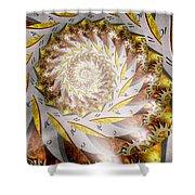 Steampunk - Spiral - Time Iris Shower Curtain