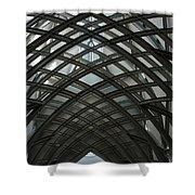 Steel Shower Curtain