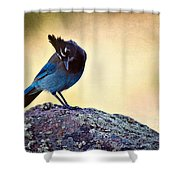 Stellers Rock Shower Curtain