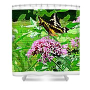 Stencilled Butterfly Shower Curtain