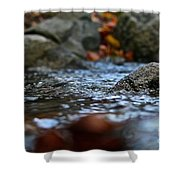 Stepping Stone Shower Curtain