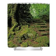 Steps In The Wild Garden, Galnleam Shower Curtain