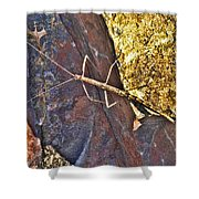 Stick Insect Shower Curtain