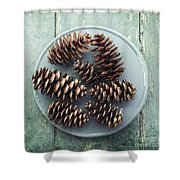 Stil Life With  Seven Pine Cones Shower Curtain