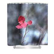 Still Amid Transition Shower Curtain