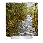 Still Creek Shower Curtain