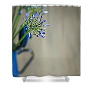 Still Life 02 Shower Curtain by Nailia Schwarz