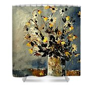 Still Life 452190 Shower Curtain