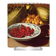 Still Life Of Cherries - Marrows And Pears Shower Curtain