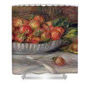 Still Life With Strawberries Shower Curtain