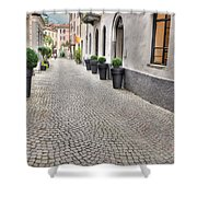 Stone Alley Shower Curtain