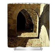 Stone And Shadows Shower Curtain