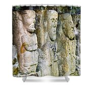 Stone Carving Figures Shower Curtain