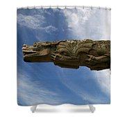 Stone Dragon Shower Curtain
