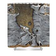 Stone Men 28b - Celebration Shower Curtain