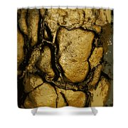 Stone Mug Shower Curtain